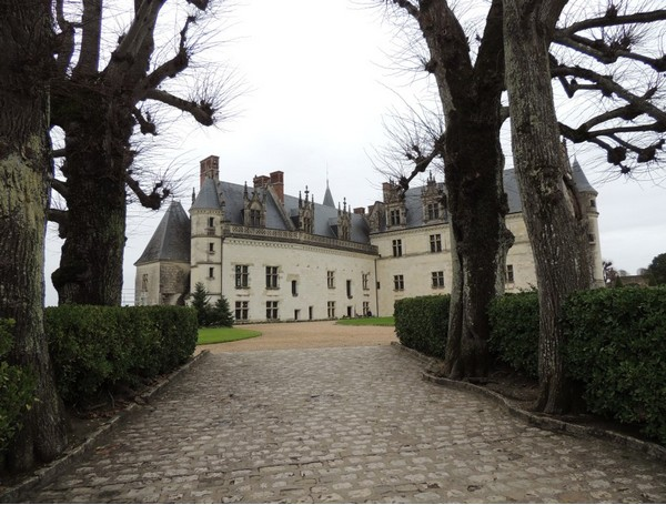 ❄ Vintage & Royal Christmas(Amboise)